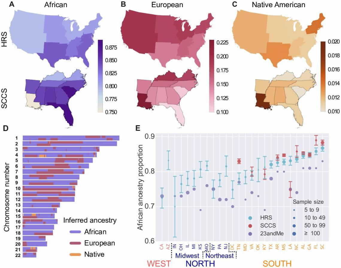 comparison of native and african americ Native americans still have genetic connections to east asia, but the extent of their dna shared with eurasians was previously unknown and thought by many scientists to be the result of intermingling with europeans after their colonization of the americas.